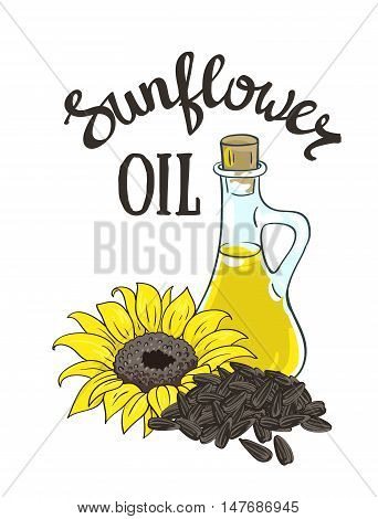 Vector hand drawn yellow sunflower sunflower seeds and glass jug with oil.