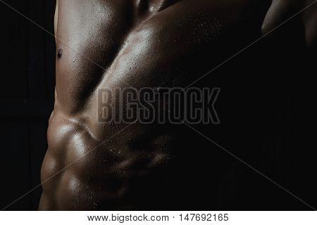 Male Muscular Torso