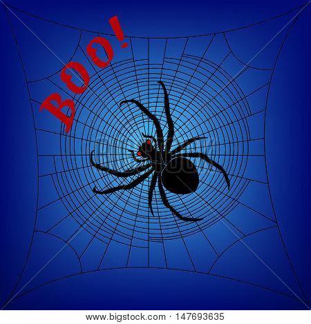 Spider on cobweb on a dark blue background