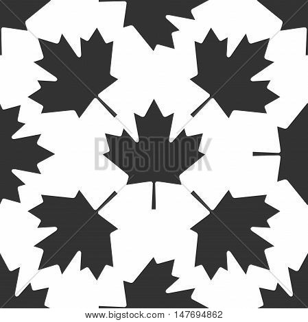 Canadian Maple Leaf icon pattern on white background. Vector Illustration