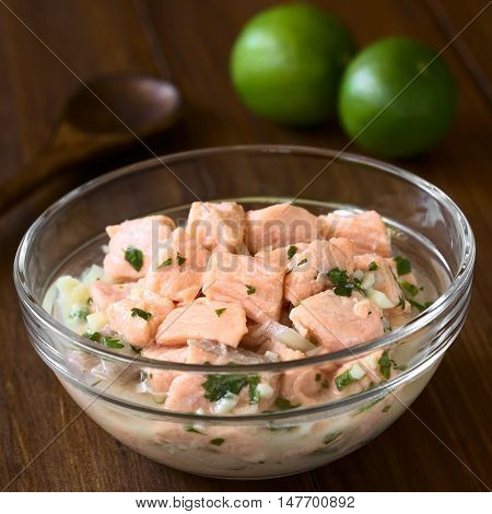 Chilean salmon ceviche prepared with onion garlic fresh coriander salt and lemon juice photographed with natural light (Selective Focus Focus in the middle of the ceviche)