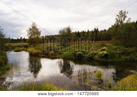 Beautiful autumn lanscape with pound and trees