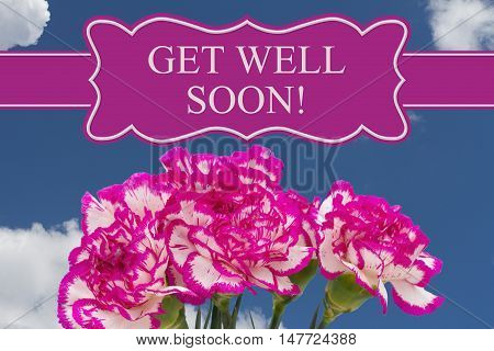 Get Well Soon message with a pink and white peony bouquet with a sky background