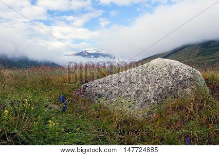 Meadows near Dzhumalinsky thermal spring in Altay Mountains, Siberia, Russia
