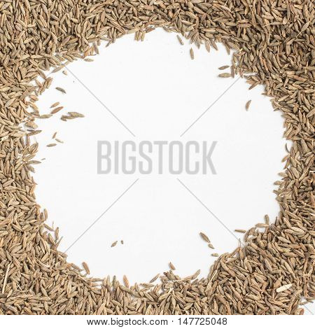 Cumin Seeds Frame isolated in white background