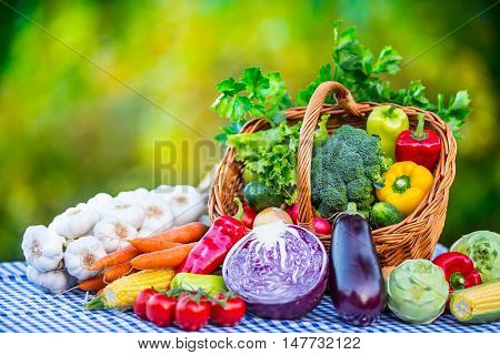 Vegetables. Fresh mix vegetable on table in the background garden. Assortment of fresh vegetables close up.