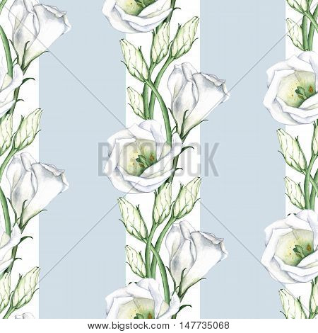 White flowers with stripes. Seamless pattern. Watercolor painting, hand-drawing.