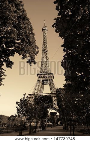 Eiffel Tower in park as the famous city landmark in Paris
