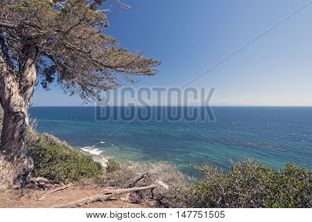 Pacific Ocean from a Coastal Cliff on the Douglas Family Preserve in Santa Barbara California