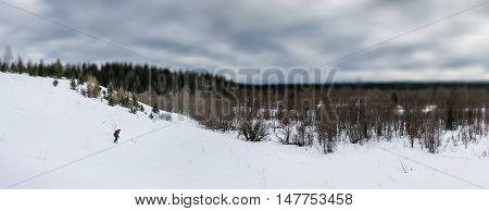Panoramic view of skier down the hill in forest. Selective focus filter tilt-shift effect.