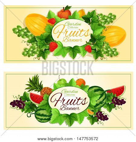 Fruits banners with oval badge framed by fresh apple, orange, pineapple, lemon, strawberry, melon, green and violet grapes, watermelon fruits, sappy green leaves and grapevine