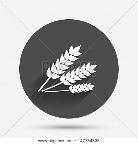 Agricultural sign icon. Gluten free or No gluten symbol. Circle flat button with shadow. Vector