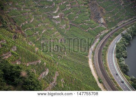 Famous German Wine Region Moselle River in Winningen 9