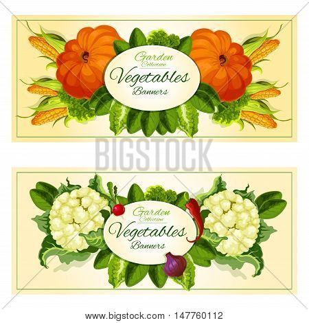 Vegetables and salad greens banners with broccoli, onion, corn, radish, chilli pepper, lettuce, pumpkin, cauliflower, spinach and watercress leaves placed around oval badge with copy space
