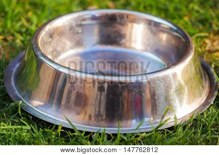 Closeup empty metal bowl for dog food sitting on green grass, animal nutrition concept.