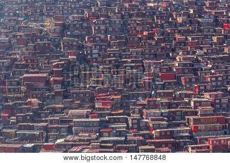 Red monastery at Larung gar (Buddhist Academy) in sunshine day Sichuan China