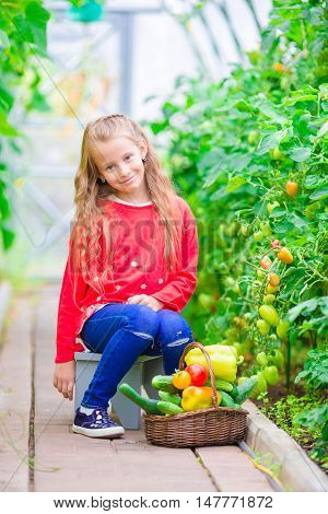 Cute little girl collects crop cucumbers and tomatos in greenhouse