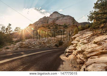 Road landscape over sunset Zion National Park Utah