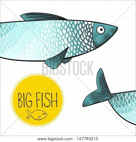 Vector illustration of turquoise fish with red fins and tail. Object isolated on white background. Cartoon style. Imitation of watercolor.
