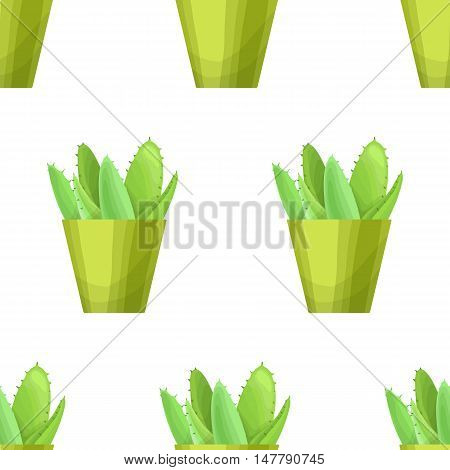 Succulent in pot - floral seamless pattern. Vector cute succulent plant on white background. Botanical wallpaper. Green leaf. Nature illustration with mexican houseplant in cartoon style