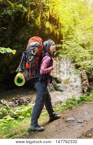 woman hiker trekking on trail in mountains river and rock with moss on background. Girl hiker walking on dirt road in forest. Healthy lifestyle adventure hiking trip. Hiker walking with backpack on hiking trail in forest