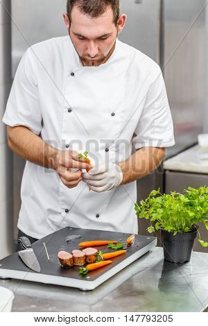 Young chef preparing ornamental elements for his fine dining dish