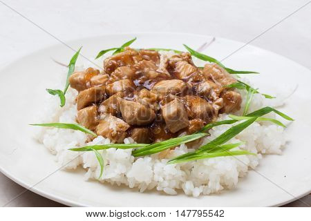 chicken teriyaki with rice close-up green onions