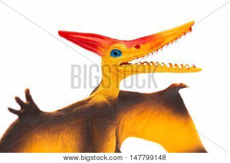 orange pterosaurs toy on a white background close up