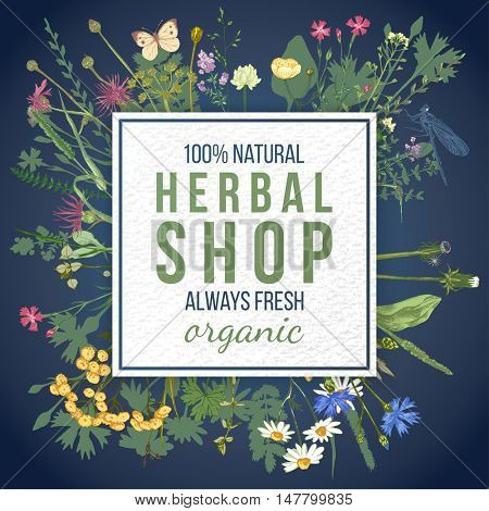 Herbal shop square emblem over wild herbs and flowers pattern. Easy to use in your organic and eco friendly designs
