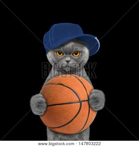 Cute cat in cap holding a ball -- isolated on black