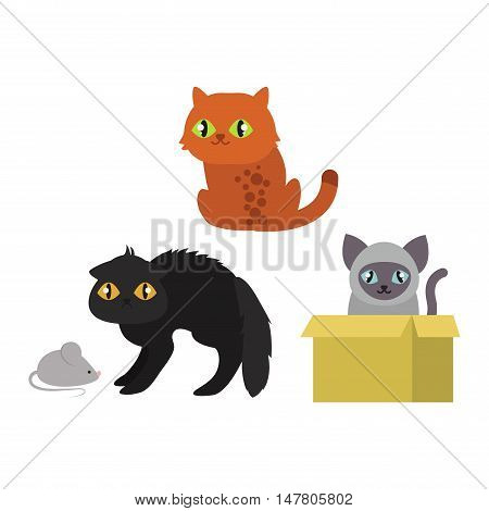 Cats collection vector silhouette. Cute domestic cats different animals. Different cats young adorable tail symbol playful paw. Cartoon funny standing drawing domestic pussy characters set.