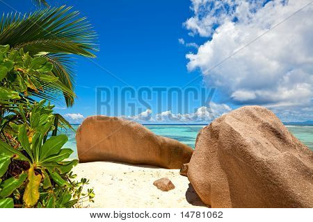 Beach With A Big Stones