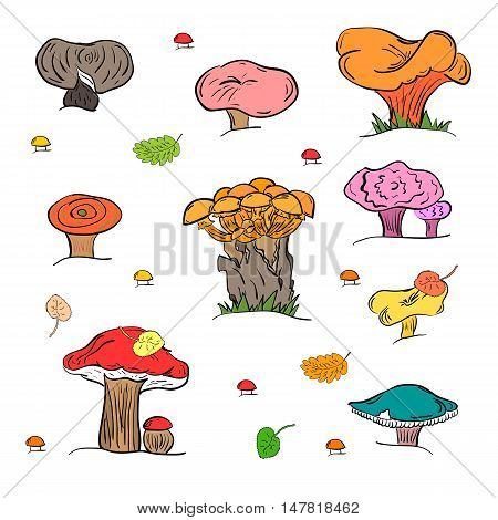 Set of Hand Drawn Painted Mushrooms  Isolated on White. Autumn Falling Leaves. Doodle Style. Vector Illustration.