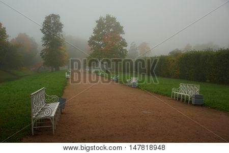 Foggy autumn morning and in the Alexander Park in Tsarskoye Selo