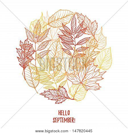 Hand Drawn Vector Illustration. Background With Fall Leaves. Autumn Design Elements. Hello September