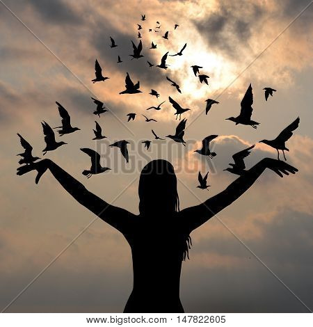 Learning to fly concept with birds flying and silhouette of woman