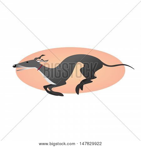 Stylized image dog. Running greyhound isolated on background.