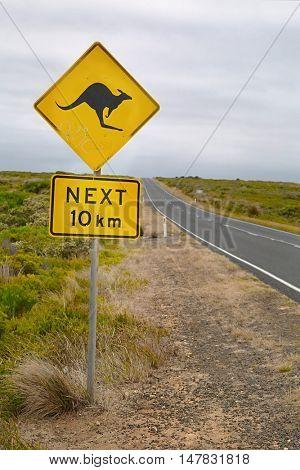 Kangaroo warning sign on the roadside