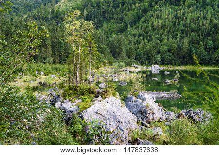 Scenic coast of Vorderer Gosausee lake Salzkammergut Austria. Selective focus