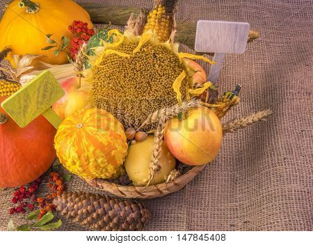 Wicker basket with an abundance of fall products - Autumn image with the harvest products from the field and forest arranged in a wicker basket on a burlap with two blank placards.