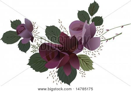 illustration with dark red rose flower