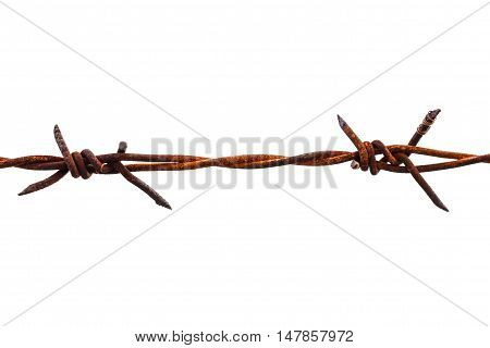 Rusted barbed wire isolated on white background