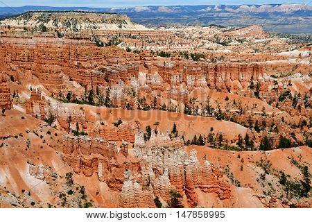 Bryce Canyon USA - july 9 2016 : the National Park
