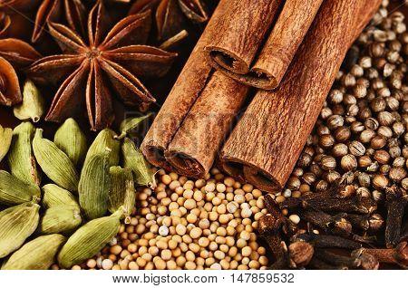 close-up cinnamon sticks stars anise cardamom clove coriander and mustard seeds on a brown background close-up horizontal