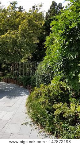 Beautifully landscaped Chinese garden pathway with a decorative greenery wall