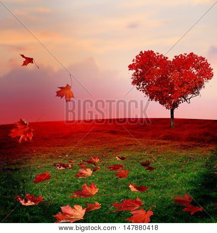 Tree of love in autumn. Red heart shaped tree at sunset.Autumn season concept.Beautiful landscape with red tree and falling leaves.Love background