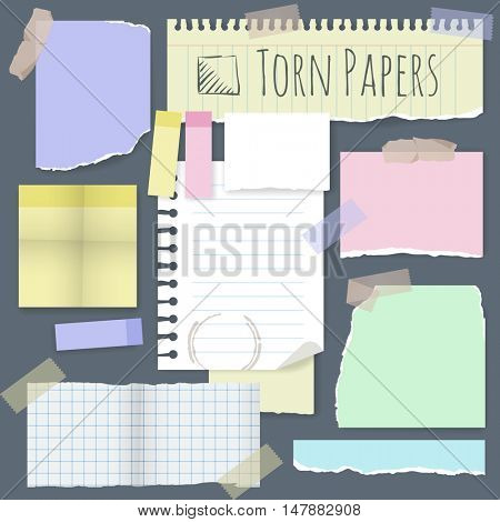 Set of various torn note papers with adhesive tape and cardboard. Vector mock up.