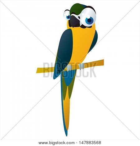 funny vector illustration of cute animal. Cartoon Macaw Parrot