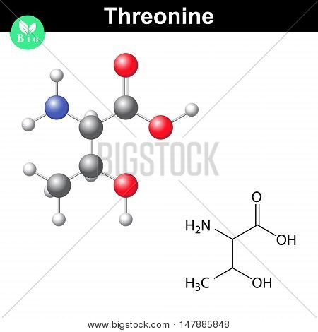 Threonine proteinogenic essential amino acid molecular structure and model 2d and 3d illustration isolated on white background vector eps 8
