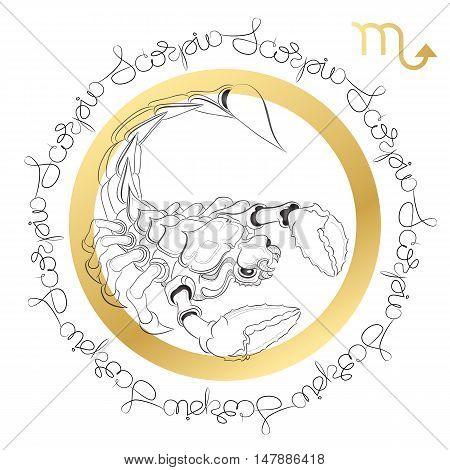 Hand drawn line art of decorative zodiac sign Scorpio on white background. Horoscope vintage card in zentangle style with words.